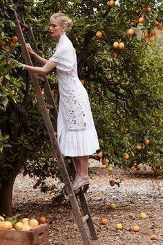Byron Lars Beauty Mark Sunlace Shirtdress  I LOVE this. It's so 1910s!!