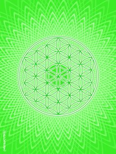 Sacred Geometry STICKER heart chakra art with flower of life in green