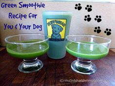 Green Smoothie Recipe for You & Your Dog