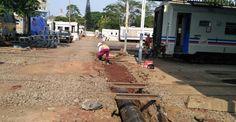 megacon-beton-perkasa-pabrik-beton-indonesia-35 Buxus
