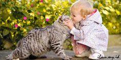 Cerita Pendidikan Moral Anak Sayangilah Binatang - IMYID
