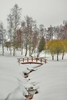 The Bridge - Pixdaus Winter Images, Winter Pictures, Nature Pictures, Winter Love, Winter Night, Winter Snow, Christmas In America, Winter Scenery, Snowy Day