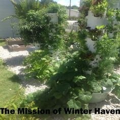 At The Mission of Winter Haven.