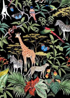 Oasis X London Zoo illustrations for fashion by Jacqueline Colley Tellinga illustrates personalized stories as unique gifts and sends them through traditional mail. Art And Illustration, Vogel Illustration, Animal Illustrations, Illustrations Posters, Jungle Art, Drawn Art, Surface Pattern, Art Inspo, Printing On Fabric