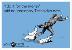 Yup, we do more than nurses, have to know more than 1 species. Get paid less. Makes sense.