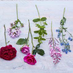Flower arranging a hand-tied bouquet