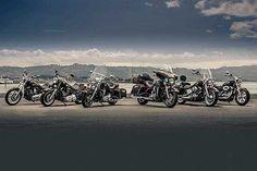 2018-2019 Harley-Davidson 110th Anniversary — Anniversary 2018-2019 Harley-Davidson
