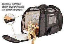 Cat Carrier Under Seat