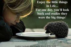 Little things & big things