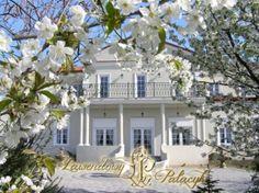 Lawendowy Pałacyk, opinie o tym lokalu znajdziesz na  http://www.gdziewesele.pl/Domy-weselne/Lawendowy-Palacyk.html