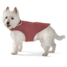 Dog Gone Smart Jacket with Ecru Piping for Dogs, 32-Inch, Red * See this great product.