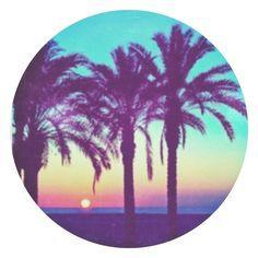 I luv Palm trees