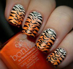 Orange fade to white tiger :) love love love