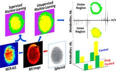 [ASAP] Anticancer Drug Affects Metabolomic Profiles in Multicellular Spheroids: Studies Using Mass Spectrometry Imaging Combined with…