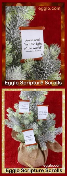 Christian Christmas gifts- Egglo Scripture Scrolls are a super fun way for kids to learn Scripture. Kids LOVE to unroll these cute little scrolls to reveal secret Scripture messages. They're perfect for holidays: Family fun at the dinner table, Christ-centered stocking stuffers, or make crafty ornaments. Adorable scrolls make fun gifts, lunchbox surprises, Sunday school prizes or craft accessories. Help your children hide God's word in their heart. egglo.com
