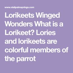 Lorikeets Winged Wonders What is a Lorikeet? Lories and lorikeets are colorful members of the parrot