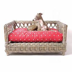 RAISED+RATTAN+DOG+BED+with+Dotty+Raspberry+Mattress