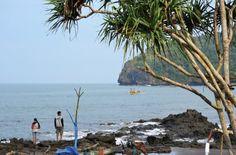 Simon Anon Satria: Pesona Alam Pantai Grajagan - Banyuwangi - Jawa Timur.