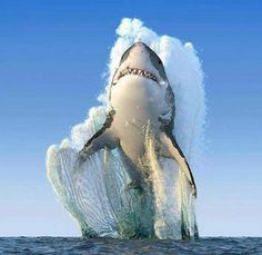 WOW! ABSOLUTELY AWESOME ⭐ National Geographic photo of the year - 9GAG