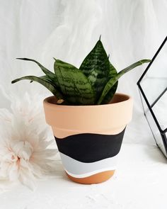 Painted Plant Pots, Painted Flower Pots, Painting Terracotta Pots, Pots D'argile, Clay Pots, Flower Pot Art, Flower Pot Design, Decorative Planters, Pottery Painting
