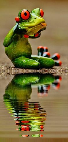 Free picture on Pixabay – frog, tongue outlines, naughty – Pinnwand Mix Cute Baby Animals, Animals And Pets, Funny Animals, Funny Frogs, Cute Frogs, Funny Animal Pictures, Cute Pictures, Beautiful Creatures, Animals Beautiful