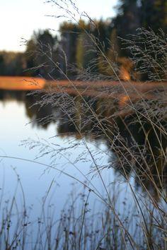Lake Alasjärvi Finland 09/15