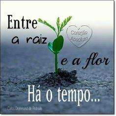 Dia D. 31 de outubro. Viva Carlos Drummond de Andrade!!!!