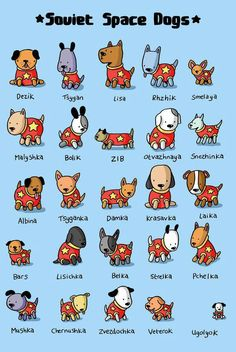 Space dogs!
