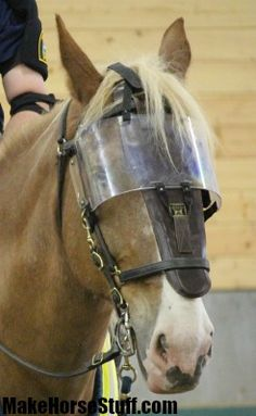 A Police horse wearing a visor and nose guard. He's a Belgian, so the nose guard is a bit too small!