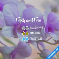 Fresh and Free - Essential Oil Diffuser Blend