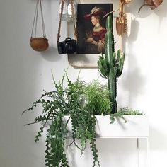 Elegant and timeless, this box on its delicate and thin legs in powder coated metal can be used for everything from plants to books or children's toys all around the house. You might even use it as a divider, to create small peaceful 'islands' or cosy corners in larger rooms. #fermliving #regram @greenhomebook #plantbox #greenliving #livingwithgreens #danishdesign