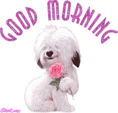 Good Morning Animated Gifs - Page 1 Images, Pictures, Photos Good Morning Animated Images, Good Morning Cartoon, Good Morning Animation, Good Morning Cards, Good Morning Sunshine, Good Morning Friends, Good Morning Good Night, Morning Wish, Good Morning Quotes