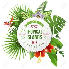 Image result for tropical logos