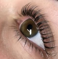 At Meraki Beauty Lounge, we're passionate about highlighting each woman's unique beauty by offering the best individual and customized eyelash services. Elleebana Lash Lift, Eyebrow Lift, Eyebrow Tinting, Natural Lashes, Natural Makeup, Semi Permanent Eyelashes, Beauty Lounge, Long Lashes, Makeup For Brown Eyes