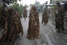 """Residents, covered with dried banana leaves and mud, walk along a road as they participate in a religious ritual known locally as """"Taong Putik"""" (Mud People), while celebrating the Catholic feast day of Saint John the Baptist in the village of Bibiclat, Nueva Ecija, north of Manila, Philippines June 24, 2014. According to Saint John the Baptist parish church, hundreds of devotees participated in this year's feast day, which has been observed in the village since 1945, REUTERS/Erik De Castro Catholic Feast Days, Religious Rituals, Promised Land, Tropical Beaches, John The Baptist, Southeast Asia, Mud, The Good Place, World"""