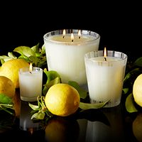 If you love citrus fragrances with an earthy side, be sure to give Lemongrass & Ginger a try! ----> http://www.candlesoffmain.com/nest-fragrances-lemongrass-ginger-candle.aspx