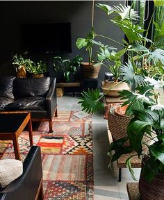 beautiful home // greenery // plants // plantes // verdures
