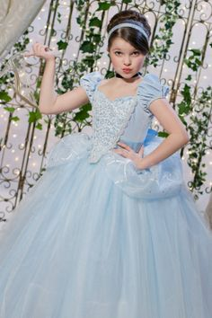 Cinderella Disney Inspired Princess Gown Tutu Costume Dress by Ella Dynae, $270.00
