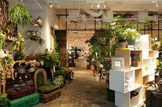 Actus interior shop Aoyama, Tokyo Japan