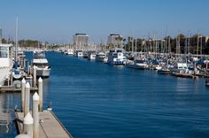 Day-time view of the Marina del Rey Harbor from the Killer Shrimp patio.