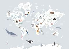 animal-map-of-the-world-vfa-prints.jpg (700×494)