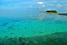 The Official site of Kura Kura Resort. Indonesia's premier paradise family and dive resort...