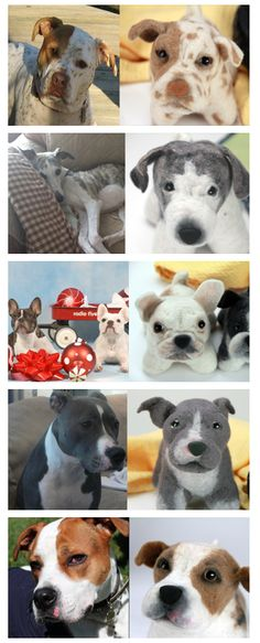How cool is this? Get your dog made into a stuffed toy.