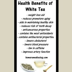 Check put a few of the reasons you should be giving white tea a try!!! #detox #natural #homeremedy #backtobasic #earth #organic #naturalmedicine #Healthy #health #alternative #holistic #naturalsolutions #home #remedy #nature #nochemicals #vegan #nature #backtobasics #raw #crueltyfree #tea