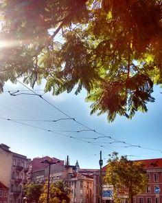 Blue Friday aqui em Lisboa!  #lisboa #azullisboa #outono #bluefriday #portugal #largodorato #sky #p3top #amazing #beautiful #loveit #bestlisbon #lisbontips #amoteportugal_ #portugal_de_sonho #instagramcml #lisbon #amar_lisboa #welovelisbonpt #dicadeviagem #travelblog #roteiropersonalizado #visitlisboa #visitportugal #rbbviagem #cultuga by cultugaoficial