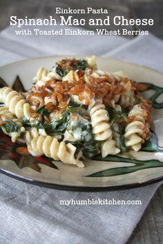 Einkorn Pasta, Spinach Mac and Cheese with Toasted Einkorn Wheat Berries   myhumblekitchen.com
