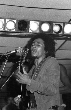 Bob Marley Concerts