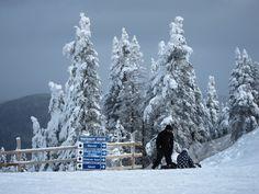 Ski holiday prices rise: see news at silvertraveladvisor.com