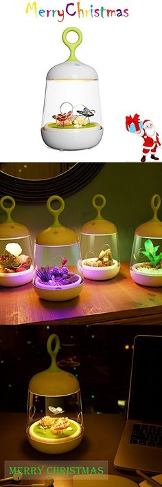 Christmas New Year Gift Plant Night Light for Kids Touch Control,Led Night Lamp Baby Nursery Night Lamp for Children,Bedside Colorful Lamp Night Lights for Baby ,Valentines Gift,Outdoor Lamp By LAOPAO