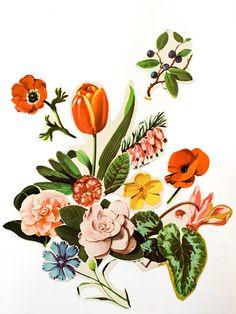 Mi Naturalismo: El Collage como alternativa creativa. Mis reflexiones en torno a este medio de expresión.  Geraldine MacKinnon - www.gmackinnon.com Collages, Botanical Art, Rooster, Drawings, Flowers, Animals, Glue Sticks, Flowers To Draw, Expressionism